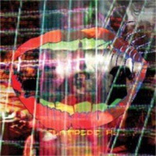 "Animal Collective - Centipede Hz (VINYL - ""Indies Only"")"