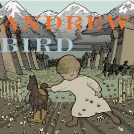 Andrew Bird - Break It Yourself (CD & DVD)