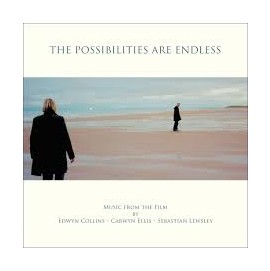 edwyn collins - the possibilities are endless [vinyl]