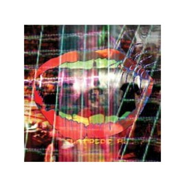 Animal Collective - Centipede Hz (CD Ltd Ed.)