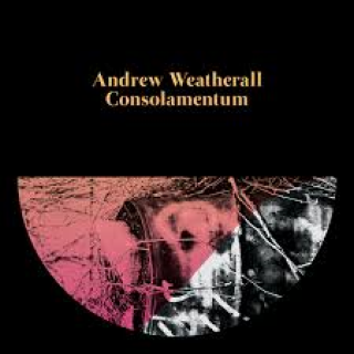 andrew weatherall consolamentum