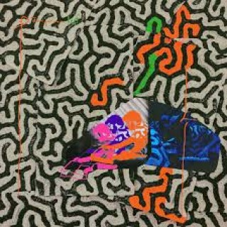animal collective tangerine reef
