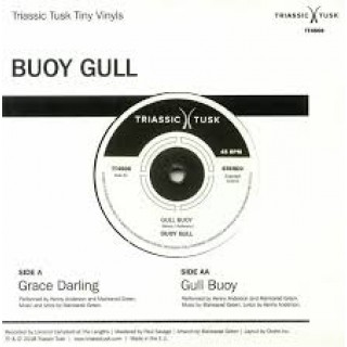 Buoy Gull - grace darling gull buoy