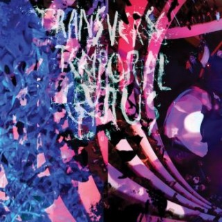 Animal Collective - Transverse Temporal Gyrus [VINYL]